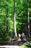 Hikers at Ash Cave Royalty Free Stock Photography