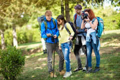 Hikers with backpack takes photo and see path  on map. Hikers with backpack takes photo and see path through forest on map Stock Photo