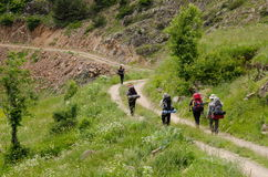 Hikers Backpacker Стоковые Изображения