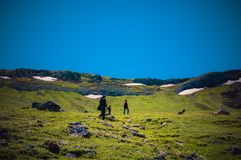 Hikers with backpacks and trekking poles walking in Artvin highland. Hikers with backpacks and trekking poles walking in Turkish highland stock photos