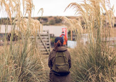 Hikers with backpacks walking through a meadow with sedge. Image of Hikers with backpacks walking through a meadow with sedge Stock Images