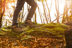 Hikers boots on forest trail. Autumn hiking. stock images