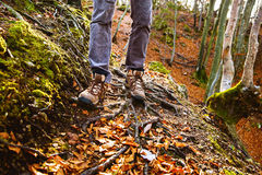 Hikers boots on forest trail. Autumn hiking. royalty free stock photos
