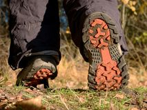 Hikers boots on forest trail. nature park among the leaves royalty free stock photos