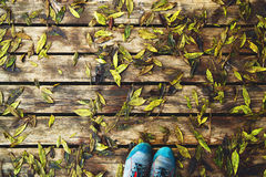 Hikers boots on wooden texture with wet autumn leaves. stock image