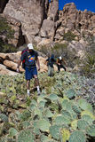 Hikers in cactus patch. Royalty Free Stock Photography