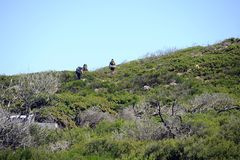 Hikers on the Cape to Cape Walk path. stock photo