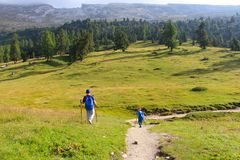 Hikers children in the landscape of green meadows and mountains of the Dolomites, Italy stock images