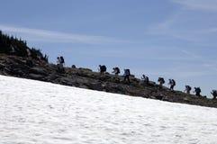 Hikers climbing Mt. Rainer. Hikers climbing along a ridge on Mt. Rainier Stock Image