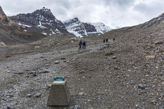 Hikers on the Columbia Ice Field and 1982 Marker Royalty Free Stock Photography