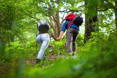 Hikers couple Stock Image