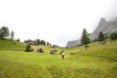 Hikers descend to the valley from the mountains of the Dolomites. Alps, through green fields Stock Image