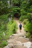 Hikers descend on trail. From Pinnacle Peak in Mount Rainier National Park Stock Images