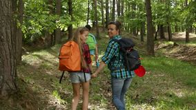 Hikers enjoy walking in forest - camera follows. Hikers enjoy walking in forest - woman and teenagers walking uphill among trees - camera follows behind stock video