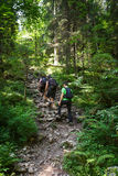 Hikers family going uphill on a trail Royalty Free Stock Photo