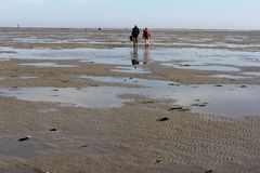 Hikers on the flats of a bank during a tour of Nature. Netherlands Stock Photography