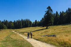 Hikers on a foot path Royalty Free Stock Photography