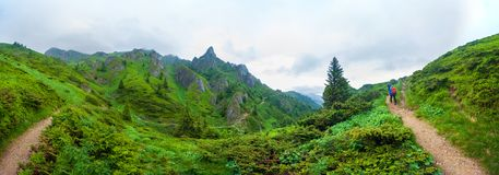 Hikers going to Mount Ciucas peack on summer royalty free stock photo