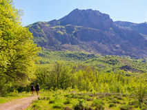 Hikers group trekking in Crimea Stock Photos