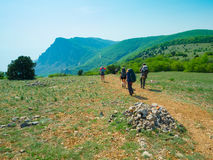 Hikers group walking Royalty Free Stock Images