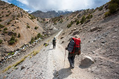Hikers in high mountains. Royalty Free Stock Photos