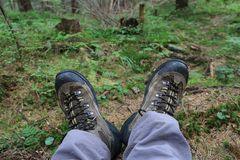 Hikers legs in boots on meadow Stock Image
