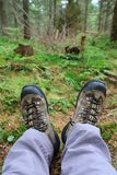 Hikers legs in boots om meadow Stock Photography
