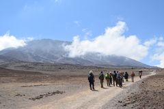 Hikers at Mount Kilimanjaro stock image