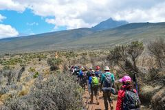Hikers at Mount Kilimanjaro, Tanzania. A group of hikers at the high altitude moorland of Mount Kilimanjaro, Tanzania royalty free stock image