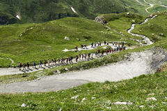 Hikers on mountain path, Valle d'Aosta Royalty Free Stock Images