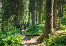 Hikers on the mountain trail Royalty Free Stock Photo