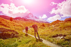 Hikers in the mountains. Hikers with backpacks on the trail in the Apls mountains. Trek near Matterhorn mount Royalty Free Stock Photos