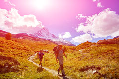 Hikers in the mountains. Hikers with backpacks on the trail in the Apls mountains. Trek near Matterhorn mount Royalty Free Stock Photography