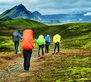 Hikers in the mountains. Hikers with backpacks on the trail in the mountains. Trek in National Park Landmannalaugar, Iceland Royalty Free Stock Images
