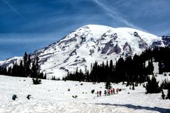 Hikers on Mt. Rainier Royalty Free Stock Image