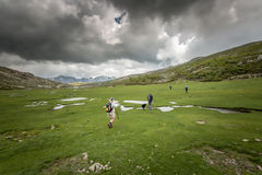 Hikers near Lac De Nino in Corsica. Four walkers and a collie dog walk near to Lac De Nino in Corsica with a stream meandering across a green plain in foreground Stock Images