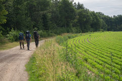 Hikers pass a field Royalty Free Stock Images