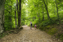 Hikers on the path to Smarna gora, a popular hike from Ljubljana Stock Images
