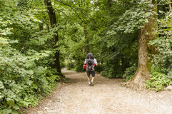 Hikers on the path to Smarna gora, a popular hike from Ljubljana Royalty Free Stock Images