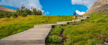 Hikers on the Plank Trail Glacier National Park Royalty Free Stock Image