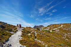 Hikers reaching the summit of a ridge with Cradle Mountain in ba. Ckground (Tasmania Royalty Free Stock Image