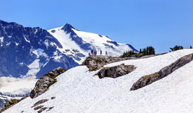 Hikers Snowfields Artist Point Glaciers Mount Shuksan Washington Stock Photos