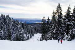 Hikers on snowy mountain in Vancouver Royalty Free Stock Photo