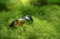 Hikers sunglasses at moss. Hikers sunglasses at grass moss Stock Images