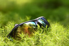 Hikers sunglasses at moss. Hikers sunglasses at grass moss Royalty Free Stock Image