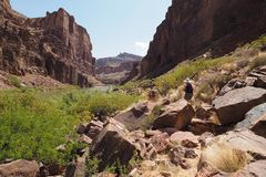 Hikers on a trail by the Colorado River in the Grand Canyon. royalty free stock image