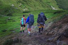 Hikers on the trail in the Islandic mountains. Trek in National Park Landmannalaugar, Iceland. valley is covered with bright green. Moss royalty free stock images