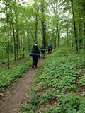 Hikers on the trail in nature hiking backpacking. In southern illinois Royalty Free Stock Photography
