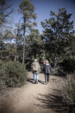 Hikers on a trail royalty free stock images