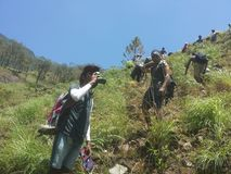 Hiking Team In Bambarakanda Mountain stock image